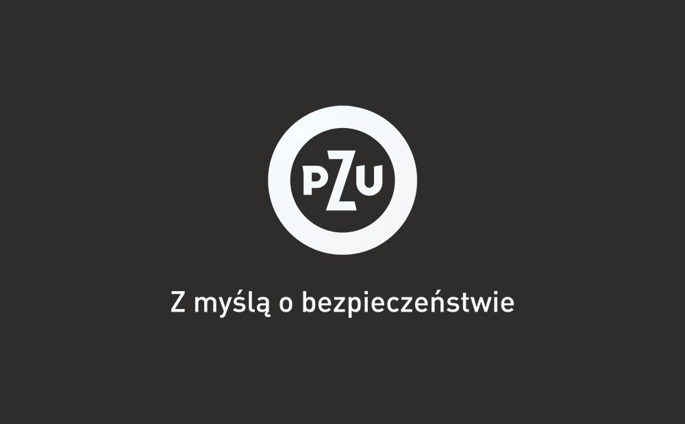 logo-pzu-szare-tlo-kfg-2015-haslo